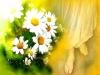 نام سوره و شماره آيه  در مورد امامت و ولايت فقيه در قرآن را نياز دارم؟